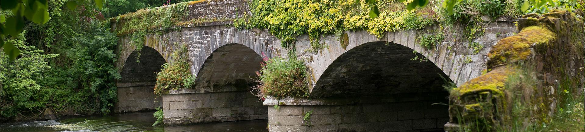 river_bride_bridge_conna_co_Cork